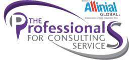 The Professionals for Consulting Services